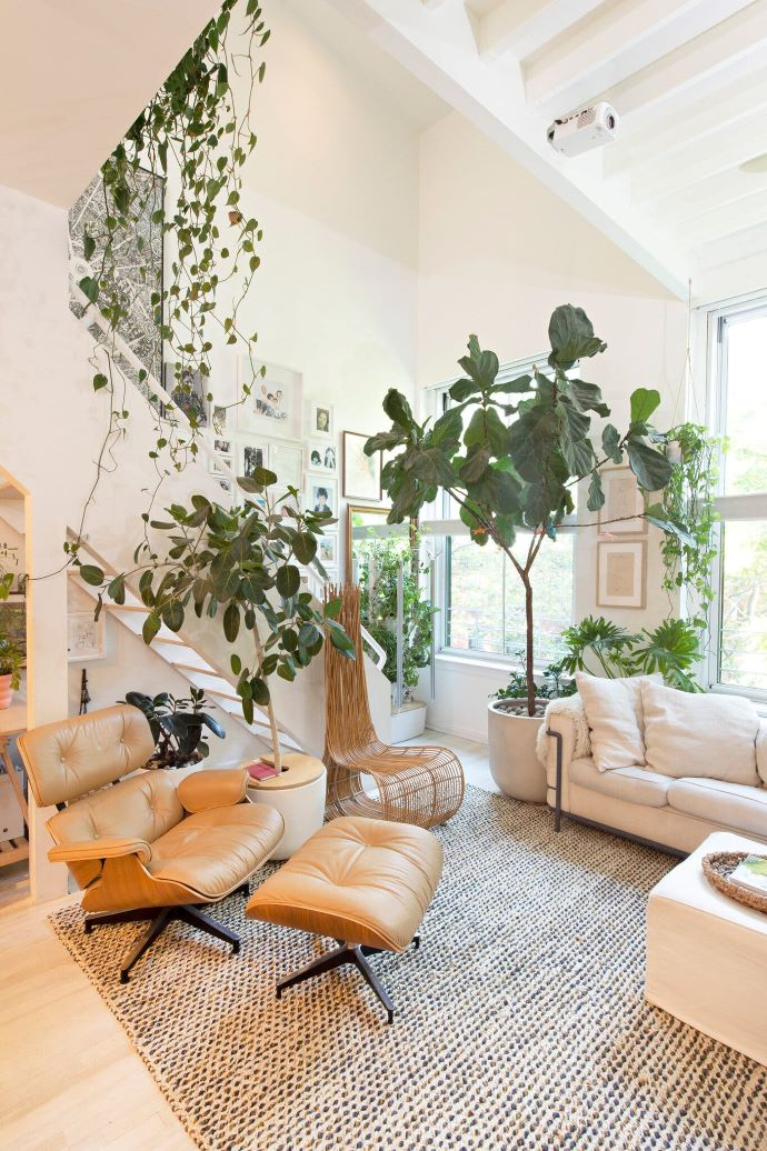 Bright and light filled living room with plants and modern furnishings