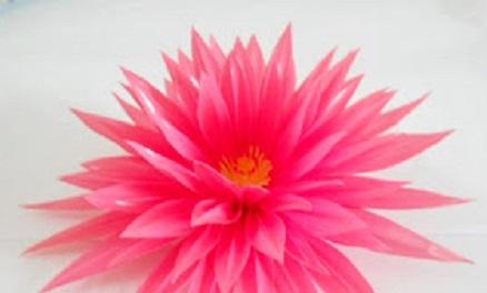 101+ Gambar Bunga Dari Pipet Paling Keren