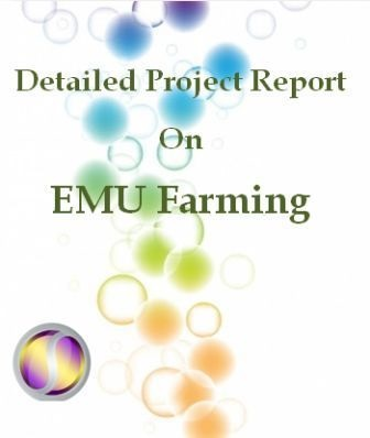Project Report on EMU Farming