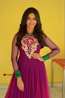 Actress Pooja Jhaveri Latest Stills in Purple Salwar Kameezt at Dwaraka Success Meet  0074.JPG