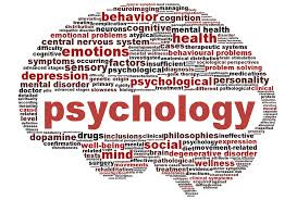 TET DSC Educational Psychology Material