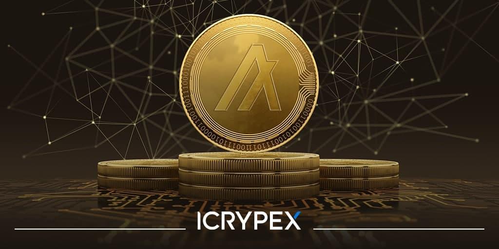 Algorand Icrypex