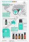 Os benefícios do uso do óleo essencial Spearmint