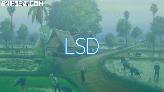 Sejarah Hari Lembaga Sosial Desa (LSD) 5 Mei