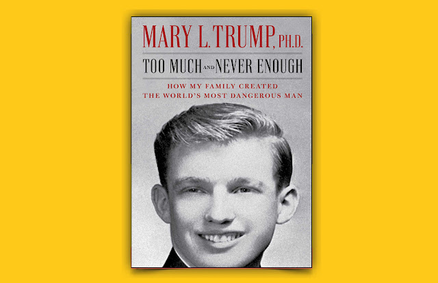 Download Too Much and Never Enough PDF - Mary Trump book, mary trump book sales to date, who is mary trump