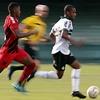 www.seuguara.com.br/campeonato paranaense 2020/liberação/