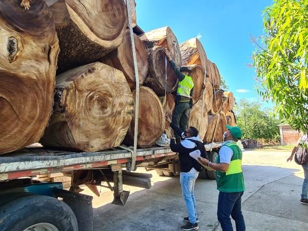 hoyennoticia.com, $70 millones en madera de algarrobillo se incautó la Policía