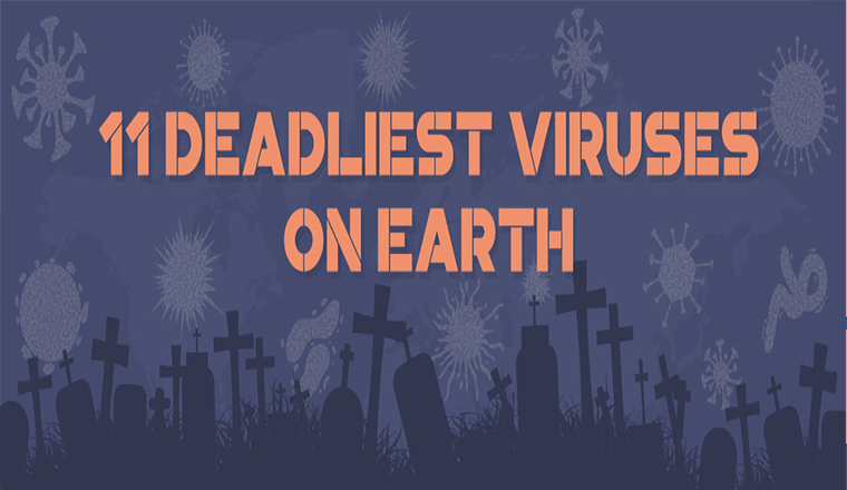 11 Deadliest Viruses On Earth
