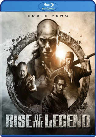 Rise of The Legend 2014 BDRip 400MB Chinese English Dual Audio 480p Watch Online Full Movie Download bolly4u
