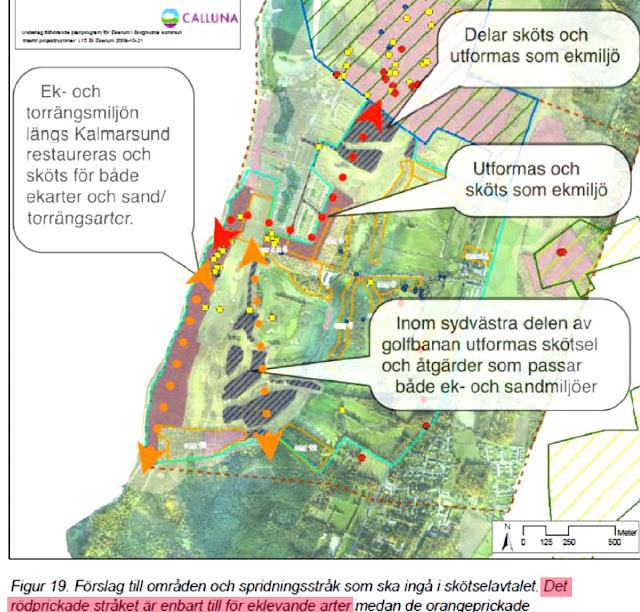 Ölandsbladet: VART GÅR DU?: November 2011