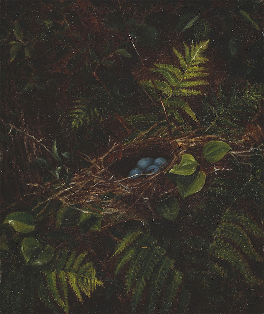This month's animals in art is this oil painting of a birds nest and ferns. Part of Companion Animal Psychology's October newsletter