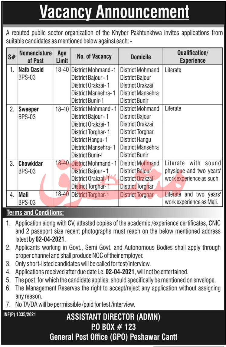 Latest Govt Jobs 2021 in Public Sector Organization PO Box 123 KPK Peshawar