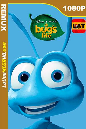 Bichos: Una Aventura en Miniatura (1998) Latino HD BDRemux 1080P ()