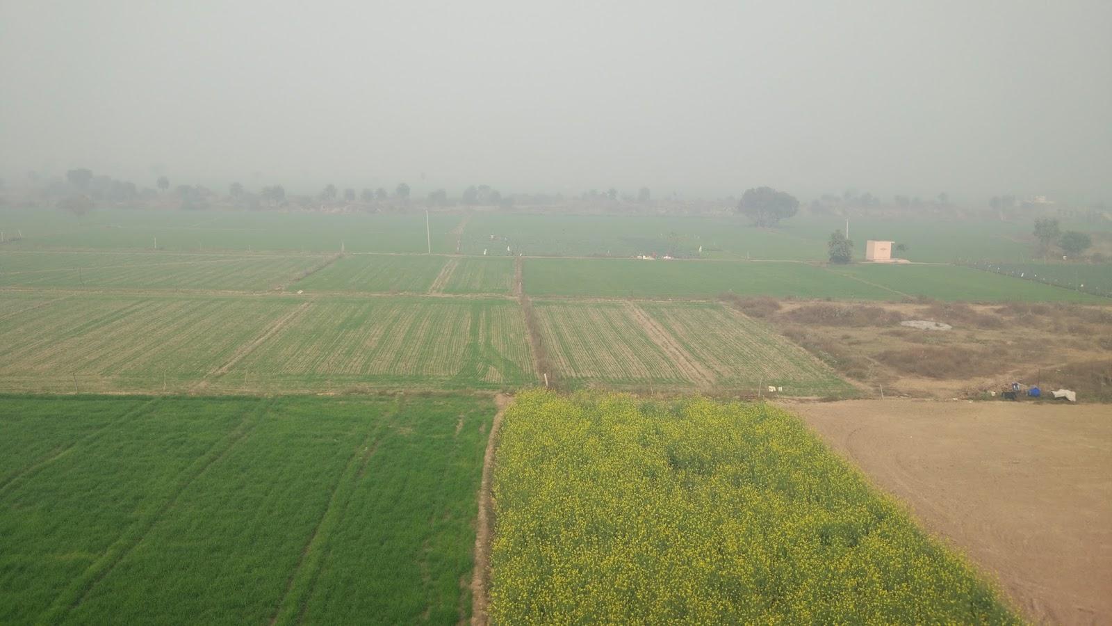 Jiva Gram, Faridabad