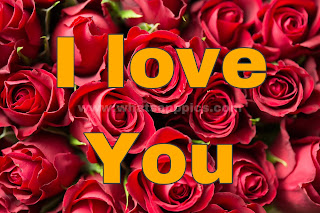 Best I Love You Images  For Whatsapp