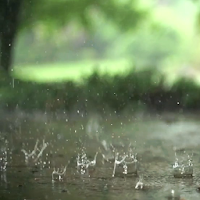Real Rain Live Wallpaper Apk Download for Android