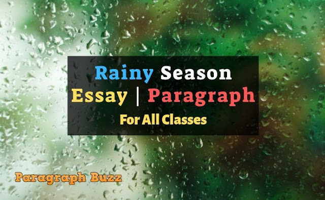 Rainy Season Essays and Paragraphs