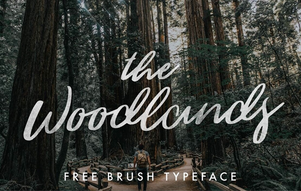 THE WOODLANDS_free font