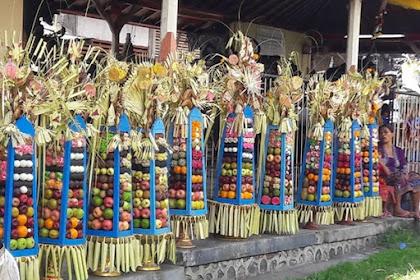 Tradisi Ngeloang atau Ngiderang Capah di Desa Tamblang
