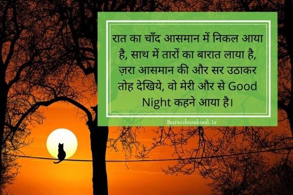 good night images cat