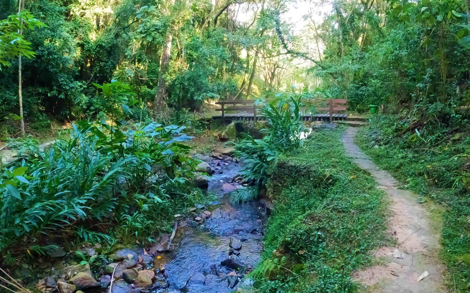 area verde com riacho em pousada