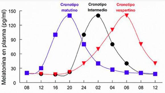 grafico-cronotipos-picos-melatonina