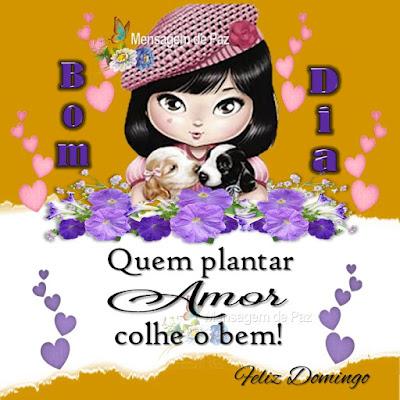 Quem plantar Amor colhe o bem! Bom Dia! Feliz Domingo!