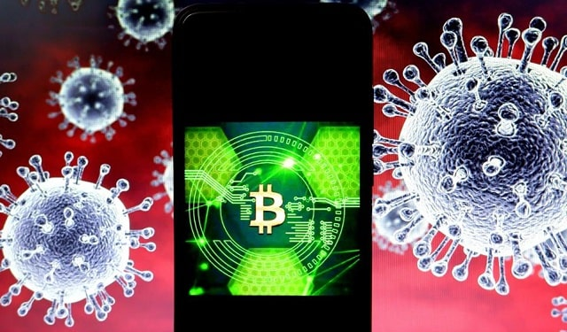 bitcoin users increase lockdown coronavirus pandemic cryptocurrency covid-19