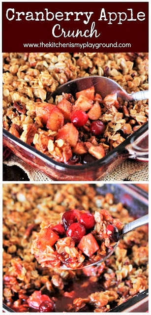 Cranberry Apple Crunch ~ A tart, cinnamon and pecan-laced crisp that's perfect as a fall or Thanksgiving side dish or dessert.  www.thekitchenismyplayground.com