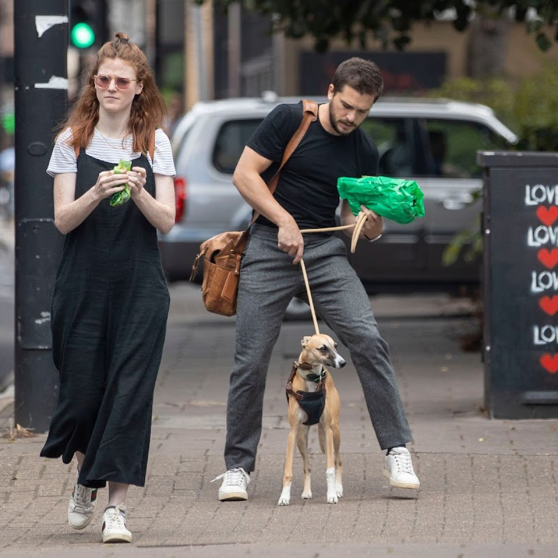 Rose Leslie and Kit Harington Clicked Outside with Their Dog in London 29 Jul-2020