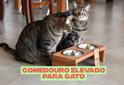 Qual a altura ideal do comedouro para gatos?