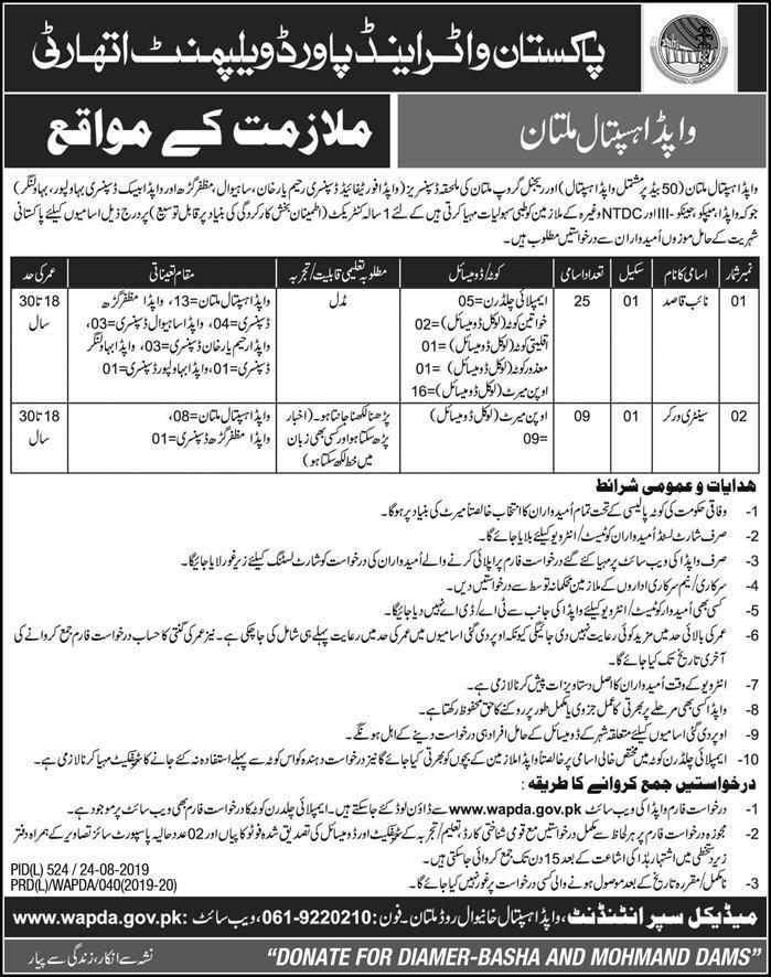Jobs in WAPDA Hospital Multan Jobs 2019 August