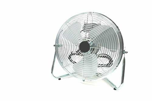 うさぎの暑さ対策に扇風機はNG