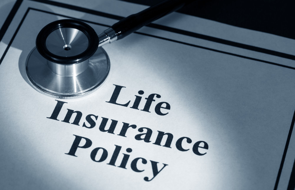 The Top 10 Best Insurance Policy Websites
