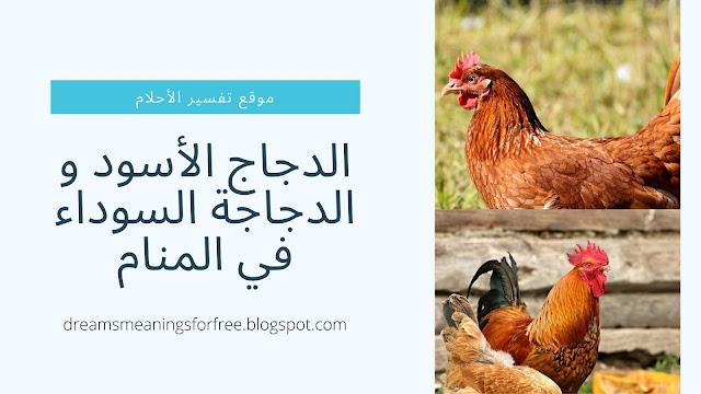 الدجاج الأسود و الدجاجة السوداء في المنام