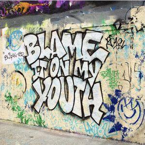 Baixar Música Blame It On My Youth - Blink-182 Mp3