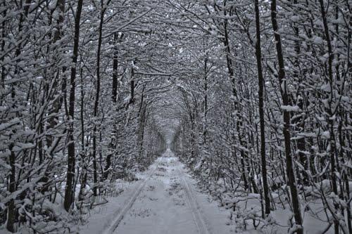 Sitio Espectacular Romántico, El Túnel del Amor, Klevan, Ucrania 3