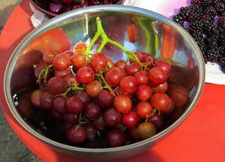 bolehkah-hamil-makan-anggur-merah