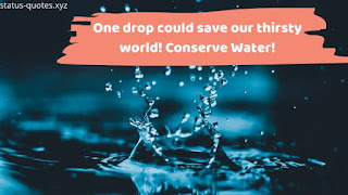 Save Water Poster : 50+ Water Conservation Poster