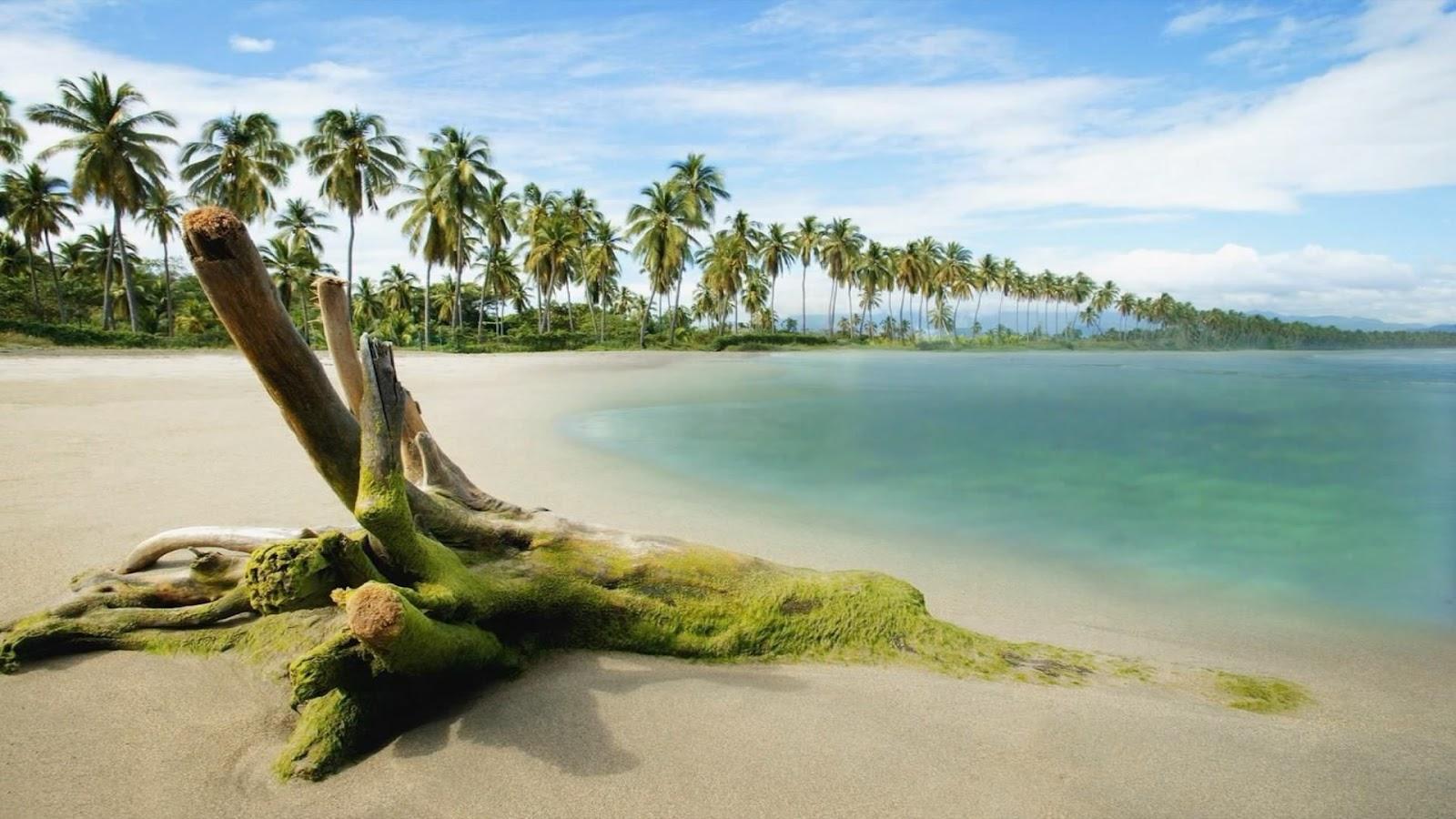 wallpaper proslut: Beautiful Romantic Beach Full HD Real ...