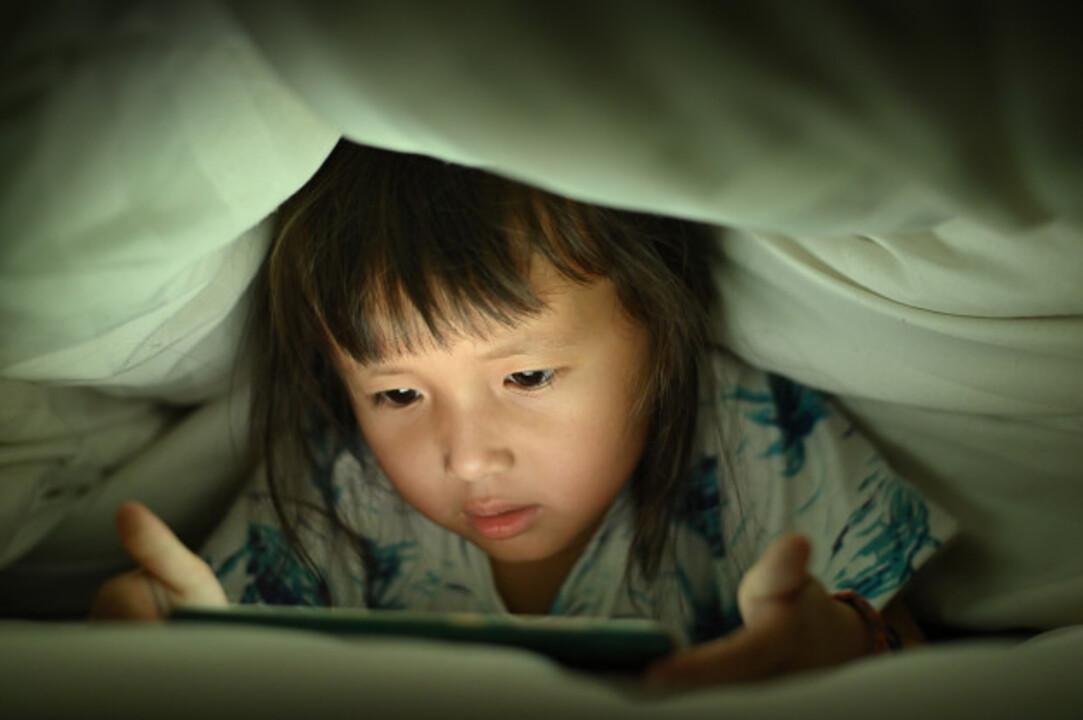 Jaringan Internet Dan Ancamannya Terhadap Pendidikan