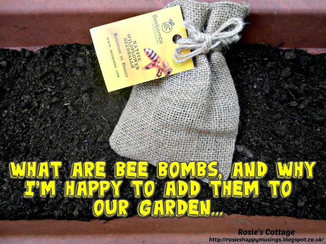 What are Bee Bombs and why I'm happy to add them to our garden...