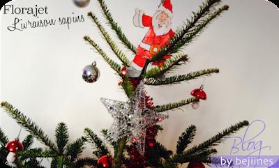 Florajet - Livraison de Sapin pour Noël
