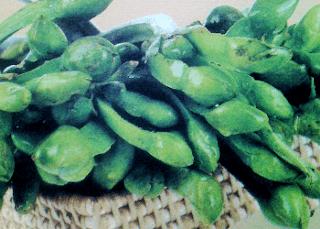 Manfaat Dan Gizi Mengkonsumsi Sayur Genjer Serta Efek Sampingnya Yang Harus Anda Ketahui