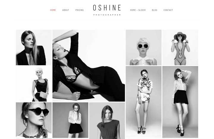Oshine Creative Multipurpose Gallery