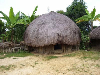 Desain Rumah Honai