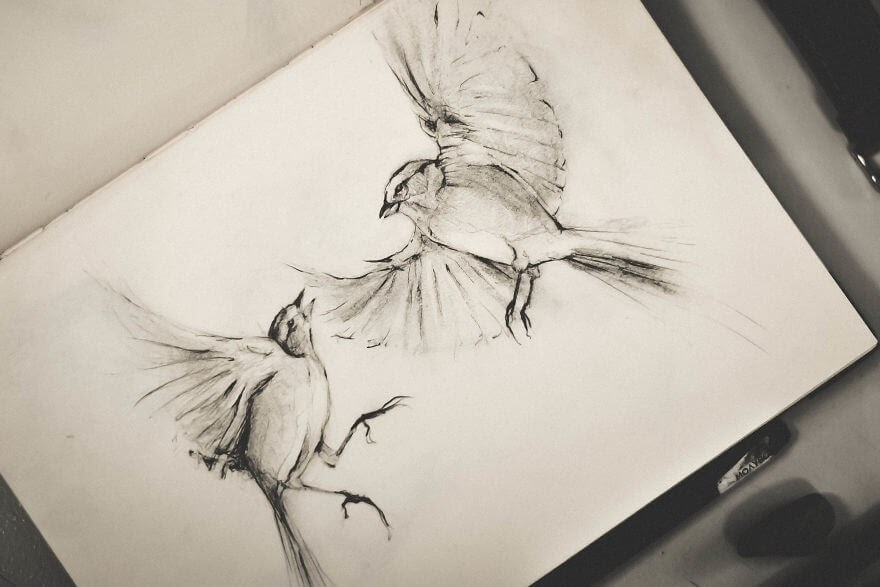 10-Birds-in-Flight-Mike-Koubou-Stylized-Sketchbook-Animal-Pencil-Drawings-www-designstack-co