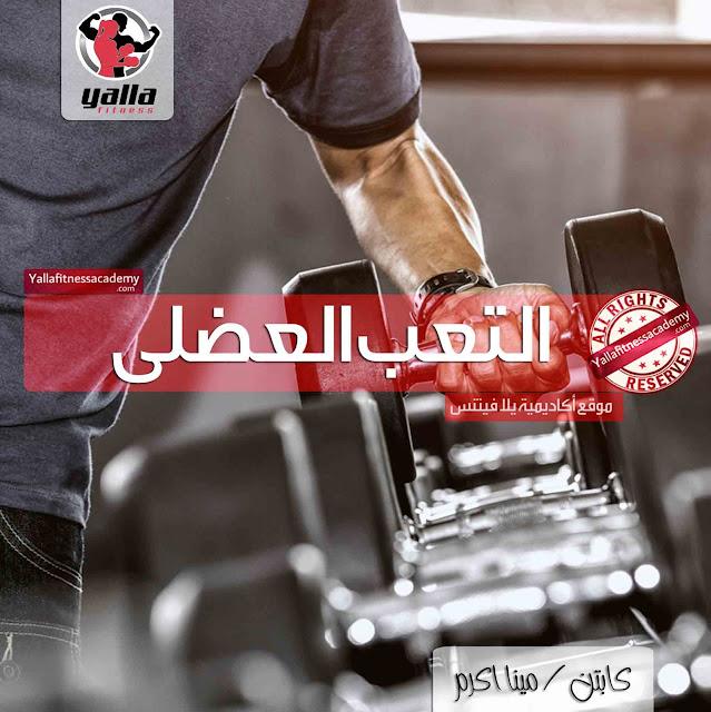 التعب العضلى Muscular Fatigue