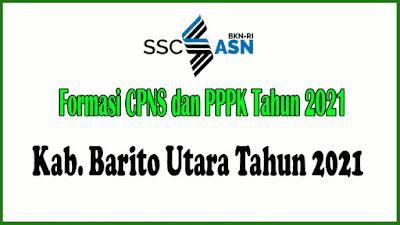 Alokasi Formasi CPNS dan PPPK KAB. BARITO KUALA Tahun 2021