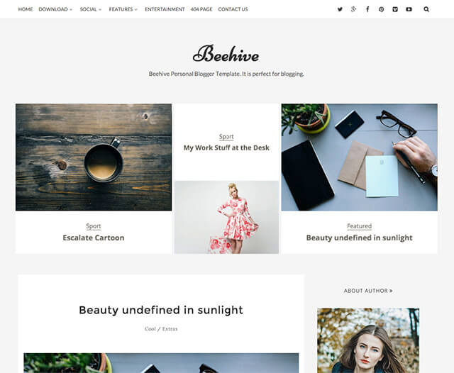 Beehive Personal Blogger Templates